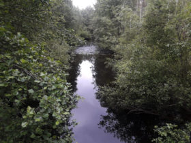 Vaalimaanjoki